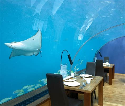 ithaa undersea restaurant prices 10 restaurants with breathtaking views around the world