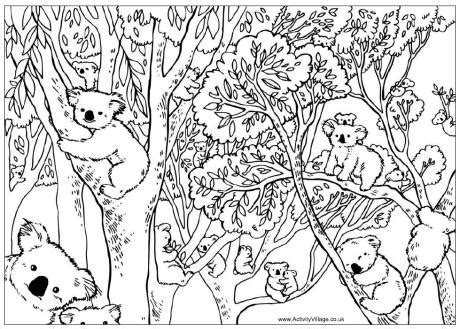 christmas koala coloring page count the koalas puzzle and colouring page