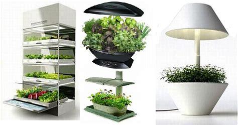 indoor herb gardens  enliven  kitchen