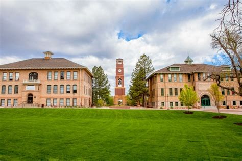 Suu Mba Application by Southern Utah Profile Rankings And Data Us