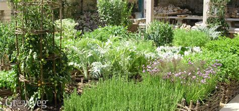 best vegetables for home garden how to plan a vegetable garden design your best garden layout