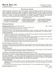 example resume of a chief financial officer focusing on