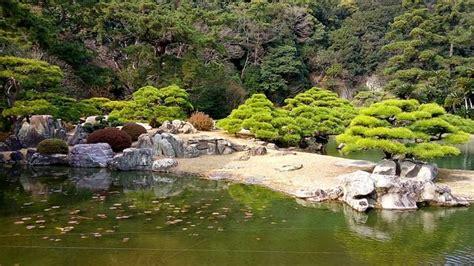 japanischer garten kaiserslautern parken kiefern im japangarten ein symbol f 252 r struktur