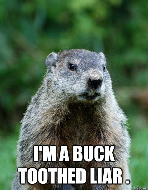 Groundhog Meme - wanted for fraud whizcows reward groundhog day