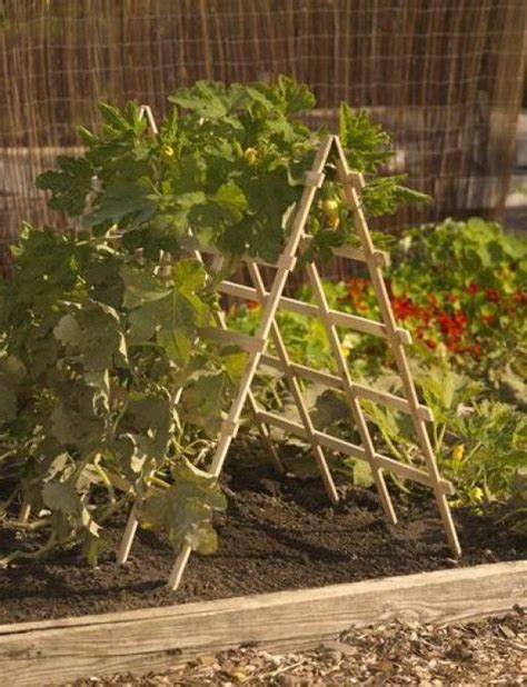 How To Build A Vertical Vegetable Garden by How To Build A Vertical Vegetable Garden Gardens Squash