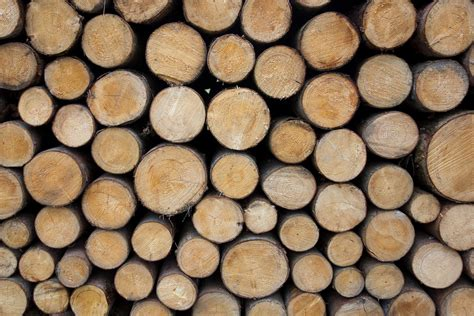 Holz Mit Kaffee Färben by Holz Holzstapel Waldarbeiter 183 Kostenloses Foto Auf Pixabay