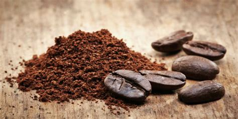 Coffee Grounds For Gardening by 7 Ways To Use Coffee Grounds In The Garden