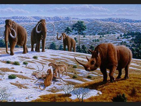 imagenes increibles de animales ranking de animales prehist 243 ricos increibles listas en