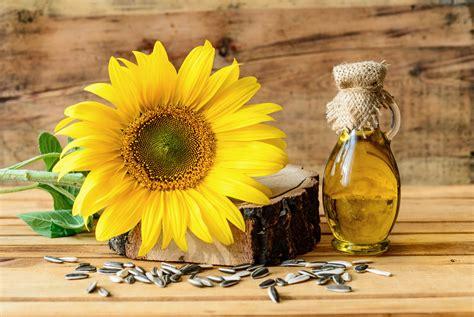 in quale alimento si trova la vitamina d i segreti della vitamina d