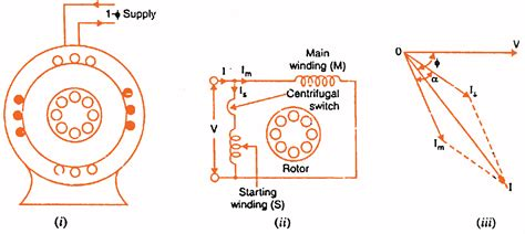 split phase induction motor split phase induction motor operation and characteristics studyelectrical