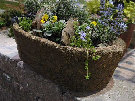 Large Hypertufa Planters by Philly Flower Show Hypertufa Planter Brown March 3