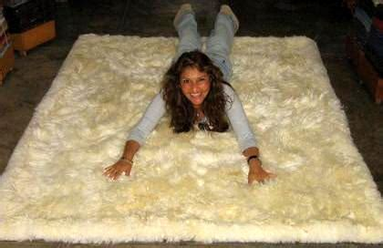 peruvian rugs for sale white babyalpaca fur rug from peru 150 x 110 cm 4 92 x 3 61 ft other rugs carpets