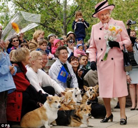 queen corgi la vie exquise the queen s corgis