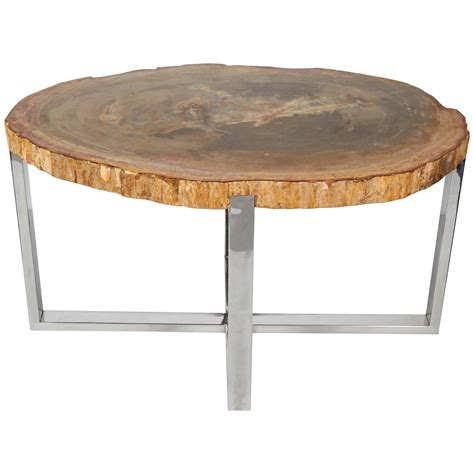 outstanding petrified wood slab side table with chrome