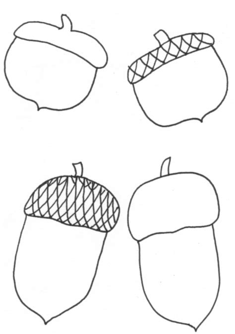 coloring page of acorn acorn coloring coloring pages