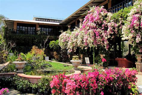 Vallarta Botanical Gardens by Vallarta Botanical Gardens Ac Aguacate Mexico Afar