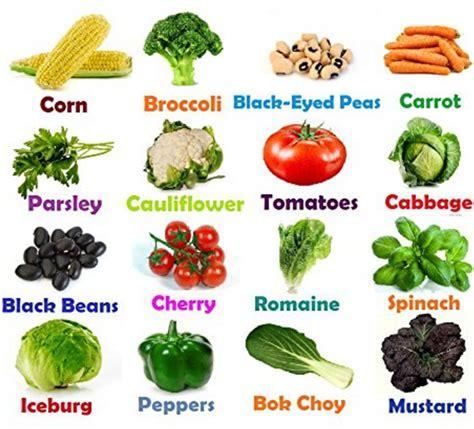 heirloom vegetable seeds  gmo seeds  hybrid easy