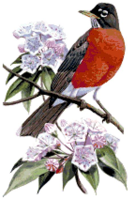 connecticut state bird flower counted cross stitch pattern