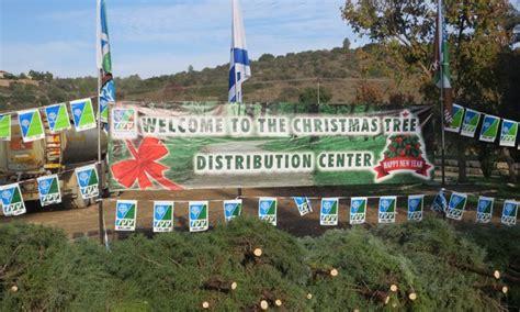 christmas tree distribution 2017 kkl jnf keren
