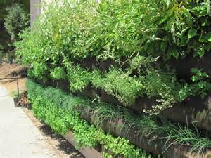 Vertical Garden Pockets 1000 Images About Woolly Pockets Vertical Gardening On