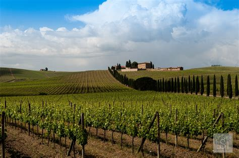 best things to do in tuscany five unforgettable places to go and things to do in tuscany