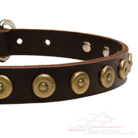 collars for puppies leather collars for small dogs small collars uk