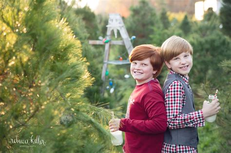 raleigh tree farm family photographer boyce farms minis