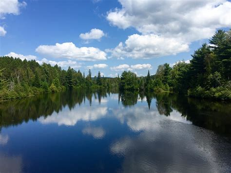 photo woods river landscape water nature forest lake
