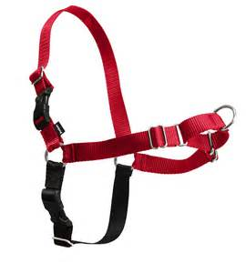 easy walk 174 harness by petsafe grp ewh