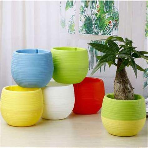 jual pot bunga kaktus pot tanaman hias  lapak rhapsody