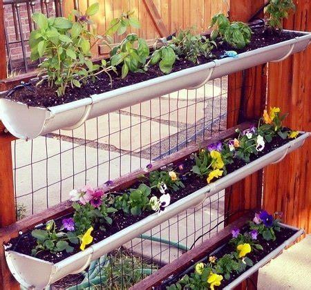 vertical gardening take your garden to new heights