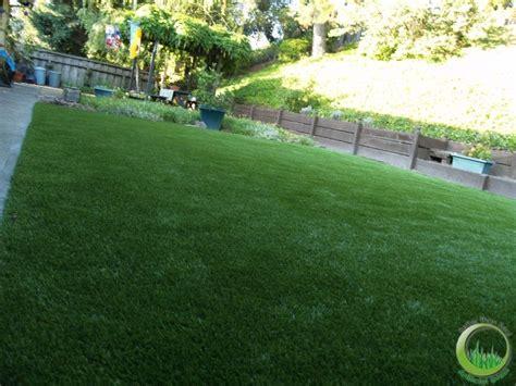 backyard artificial grass front yard and backyard in san francisco california