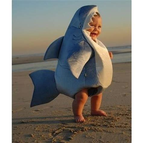 baby shark do top 10 things you didn t know about white sharks the