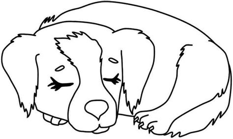 coloring pages of dog prints dog coloring pages to print learning printable