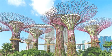 Singapore Gardens By The Bay - gardens by the bay tickets booking travel information