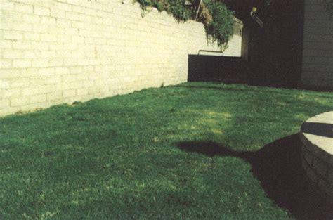 Gardeners Supply Inc Bakersfield Ca Gardener S Supply Inc Bakersfield Ca Seeing Is