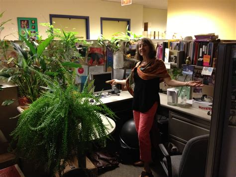 cubicle plants a cubicle can nourish nikki lee health