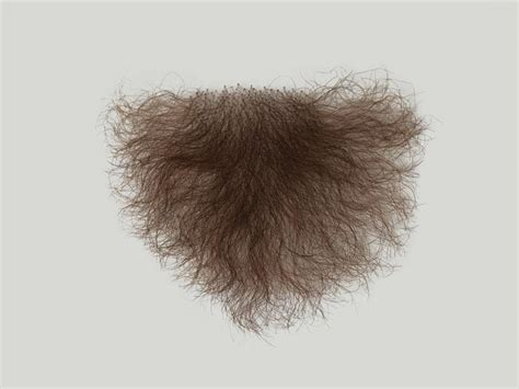 puvic hair pics atb pubic hair p1 female shape 3706 facial hair