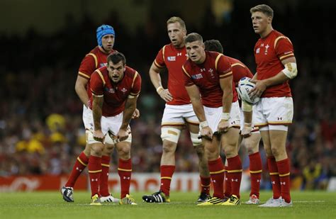 rugby world cup 2015 rugby fans avoid