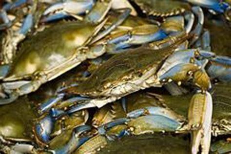 blue point crab house blue point crab house owings mills md 21117 410 363 8444