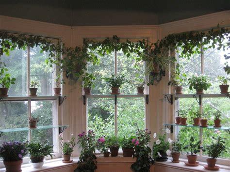 pinterest atcaleighwilz indoor garden garden windows