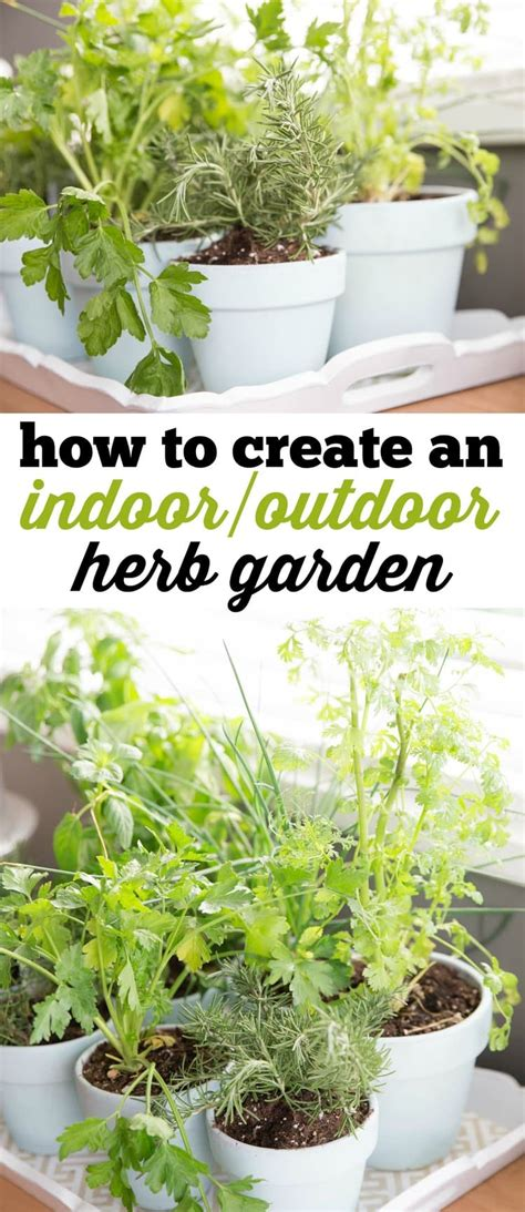 how to make an indoor herb garden 100 how to make an indoor herb garden 14 diy herb