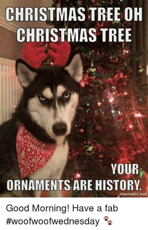 christmas tree oh christmas tree your ornaments are history 25 best memes about fab fab memes