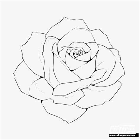 手绘的玫瑰花线稿素材图片免费下载 高清装饰图案png 千库网 图片编号4694164