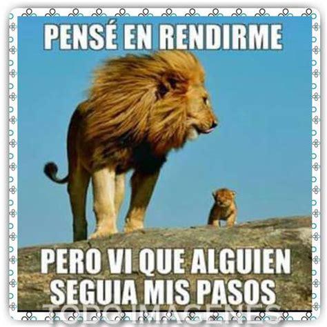 imágenes de leones para whatsapp bellas imagenes con frases de motivacion imagenes con frases