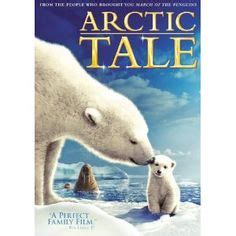 1000 Images About Arctic Animals - 1000 images about brrr artic theme preschool on