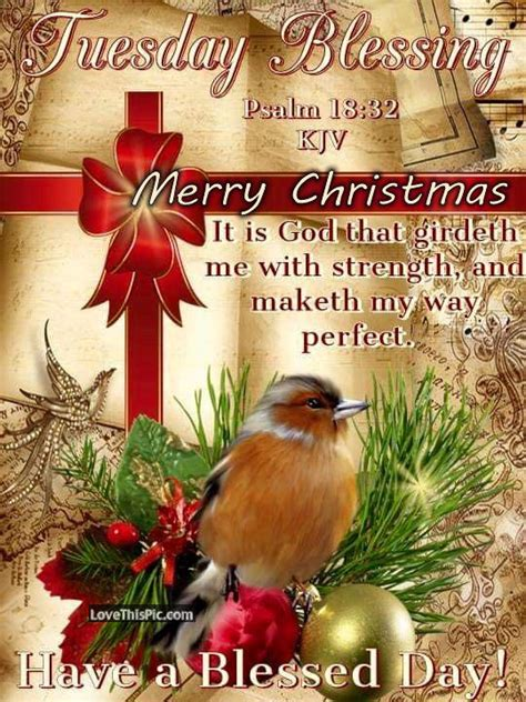 image of winters blessing christmas tree tuesday blessings merry pictures photos and images for