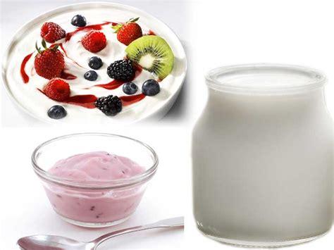 come si fa lo yogurt in casa come fare lo yogurt in casa come si fa e consigli
