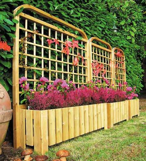piante per fioriere esterne piante esterne per fioriere idee per interni e mobili