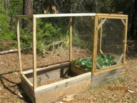 Keep Squirrels Out Of Garden by Raised Bed Gardening Keeping Squirrels Out Of The Garden Earths Solutions